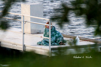 ****08182015BlanketWoman045ATwp