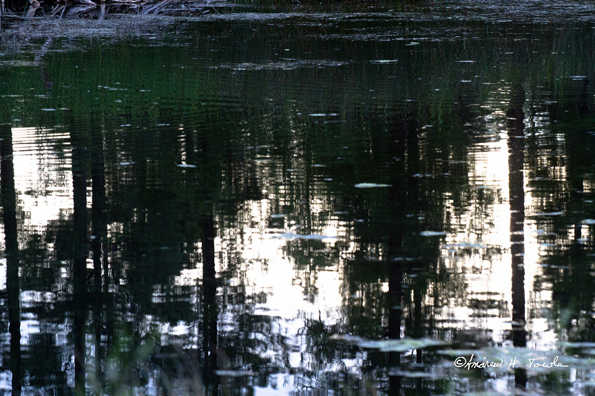 09102016Reflections029ATwp